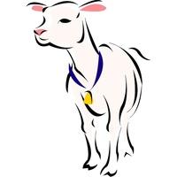 Owieczka - wzór haftu kompuetrowego